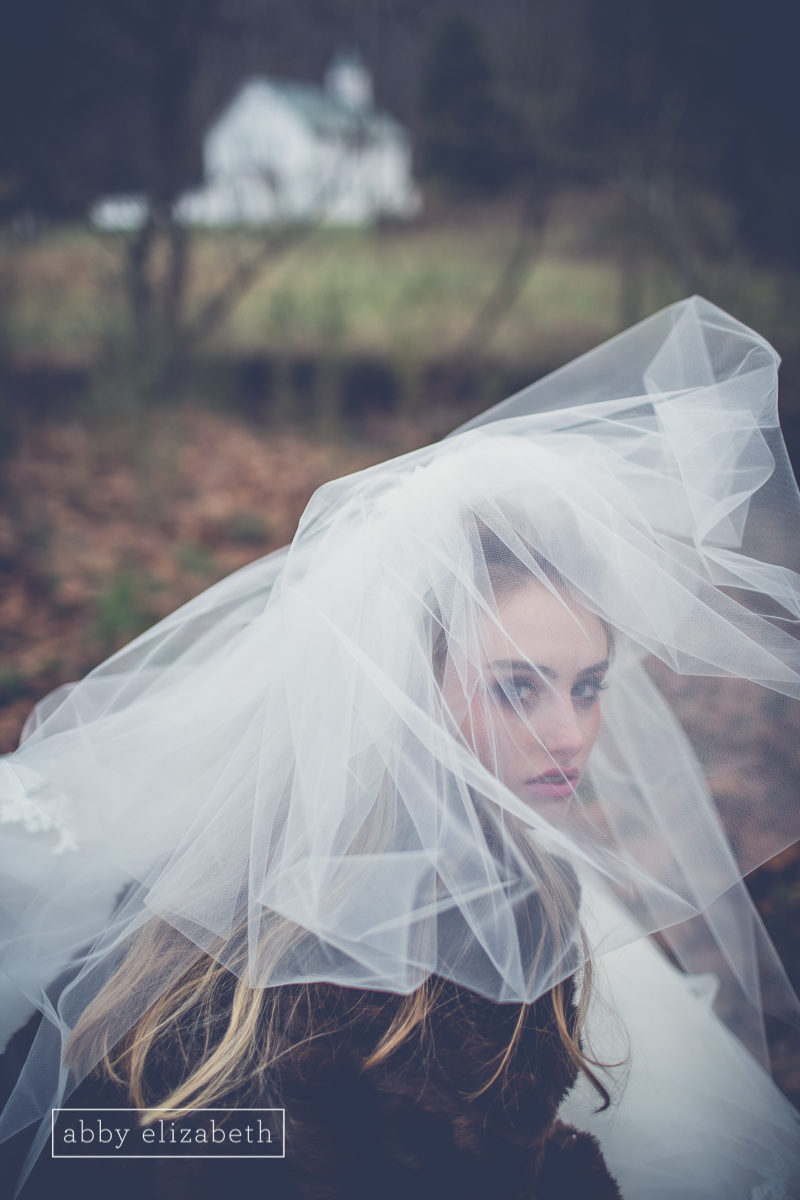 Winter_Bride_Knoxville_Bridal_Portraits_028.jpg