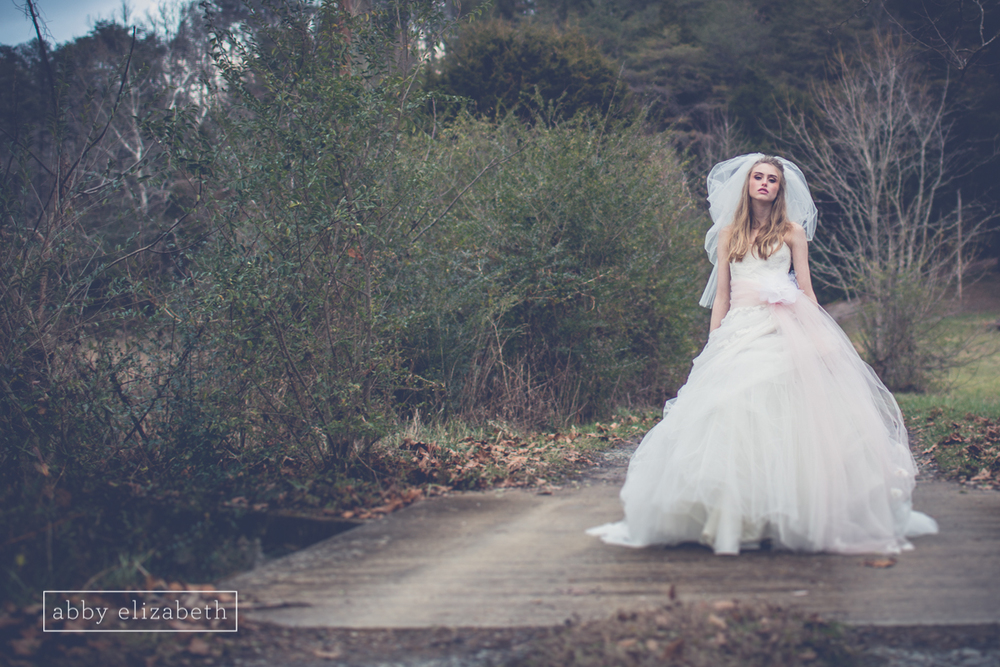 Winter_Bride_Knoxville_Bridal_Portraits_045.jpg