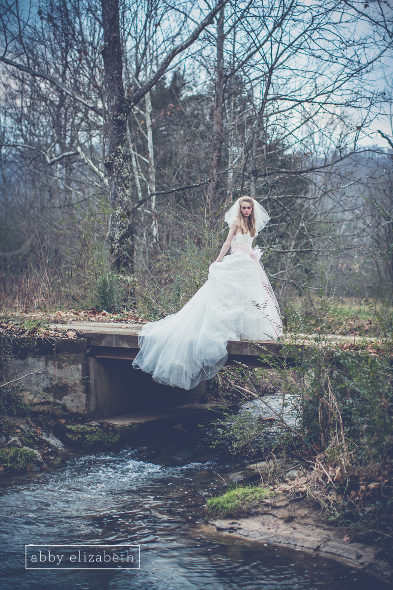 Winter_Bride_Knoxville_Bridal_Portraits_055.jpg