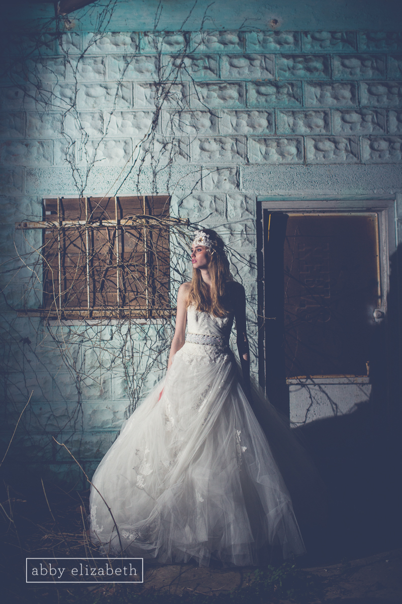 Winter_Bride_Knoxville_Bridal_Portraits_077.jpg