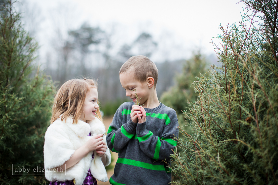 Cute kids and a Christmas Tree Farm!