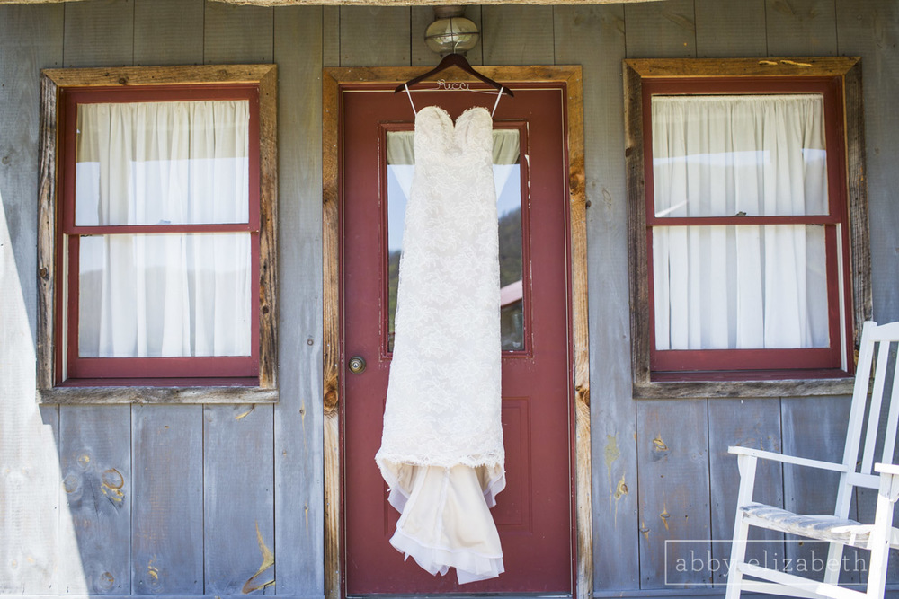 Abby_Elizabeth_Photograhy_Asheville_wedding_claxton_farms037.jpg