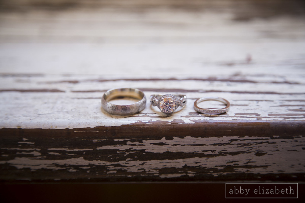 Abby_Elizabeth_Photograhy_Asheville_wedding_claxton_farms042.jpg