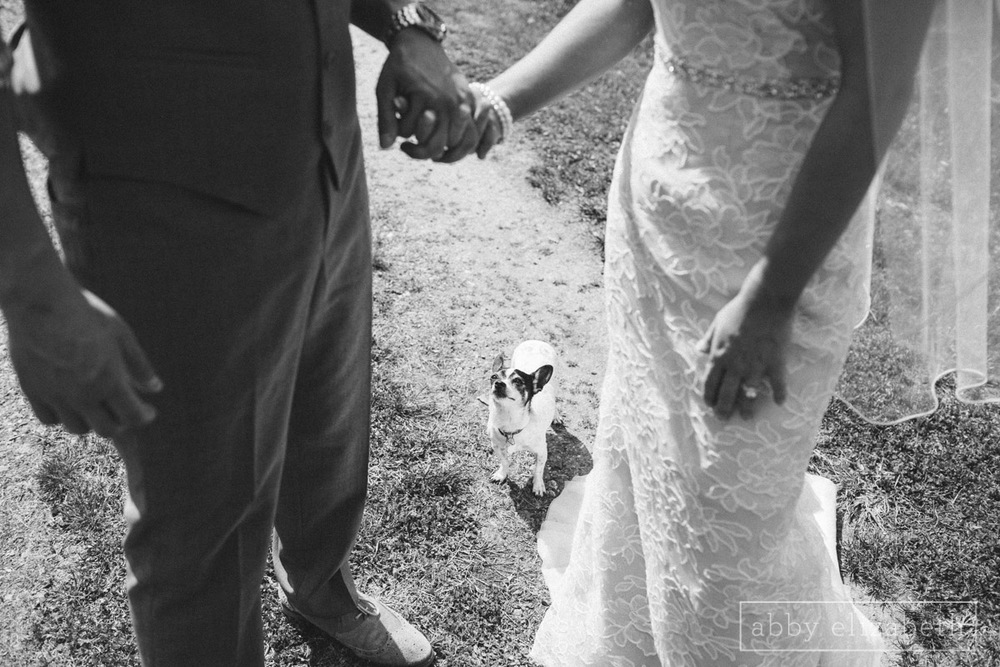 Abby_Elizabeth_Photograhy_Asheville_wedding_claxton_farms086.jpg