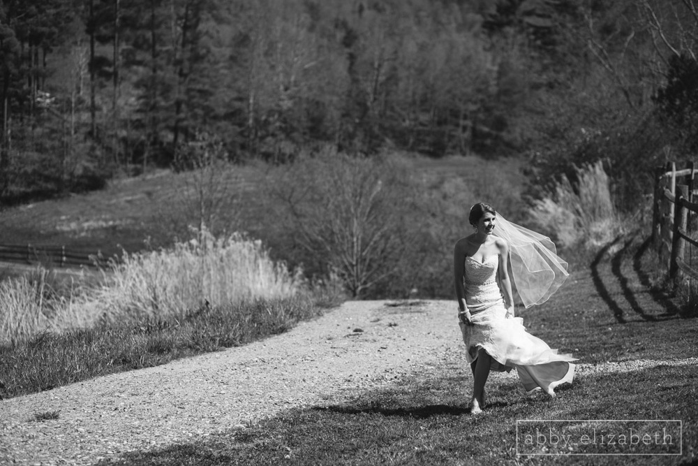 Abby_Elizabeth_Photograhy_Asheville_wedding_claxton_farms091.jpg