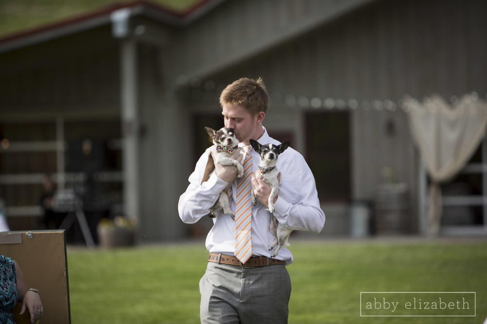 Abby_Elizabeth_Photograhy_Asheville_wedding_claxton_farms161.jpg