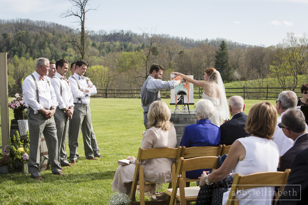 Abby_Elizabeth_Photograhy_Asheville_wedding_claxton_farms174.jpg