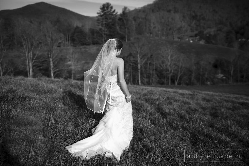 Abby_Elizabeth_Photograhy_Asheville_wedding_claxton_farms202.jpg