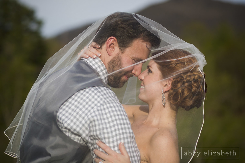 Abby_Elizabeth_Photograhy_Asheville_wedding_claxton_farms207.jpg