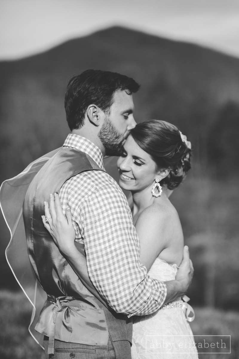 Abby_Elizabeth_Photograhy_Asheville_wedding_claxton_farms208.jpg