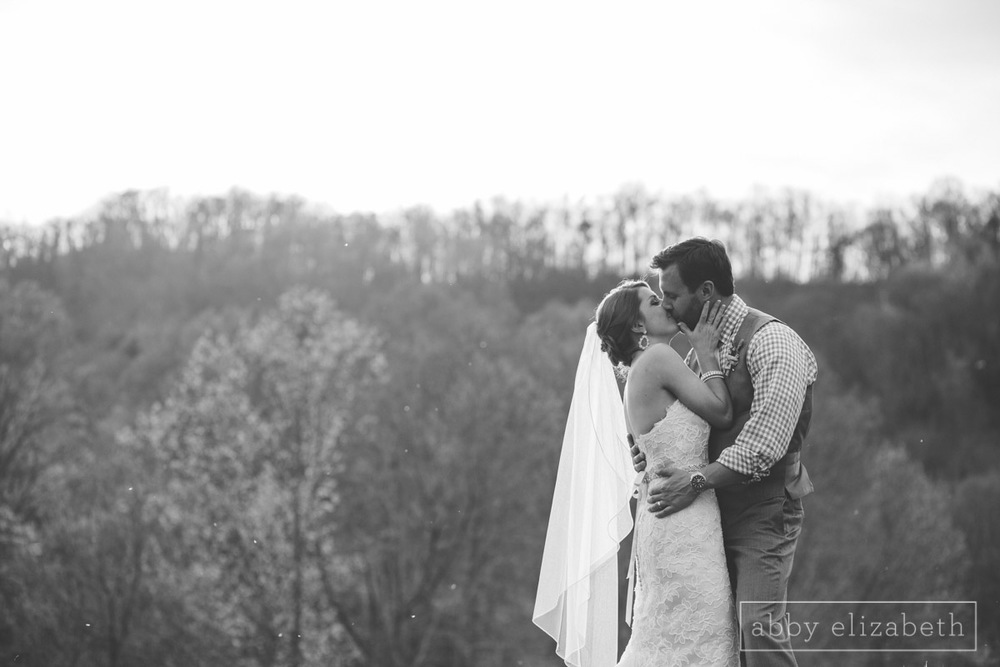 Abby_Elizabeth_Photograhy_Asheville_wedding_claxton_farms211.jpg