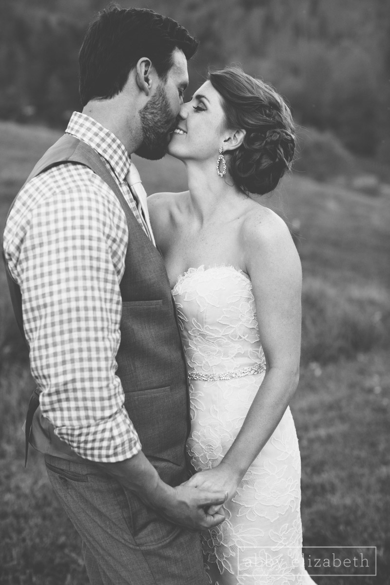 Abby_Elizabeth_Photograhy_Asheville_wedding_claxton_farms220.jpg