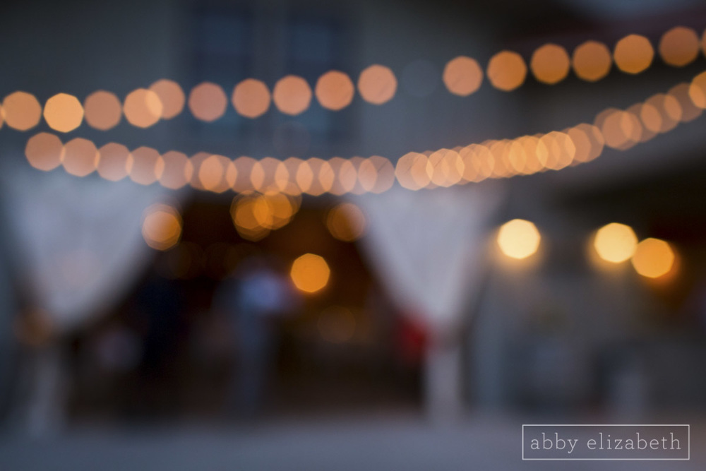 Abby_Elizabeth_Photograhy_Asheville_wedding_claxton_farms258.jpg