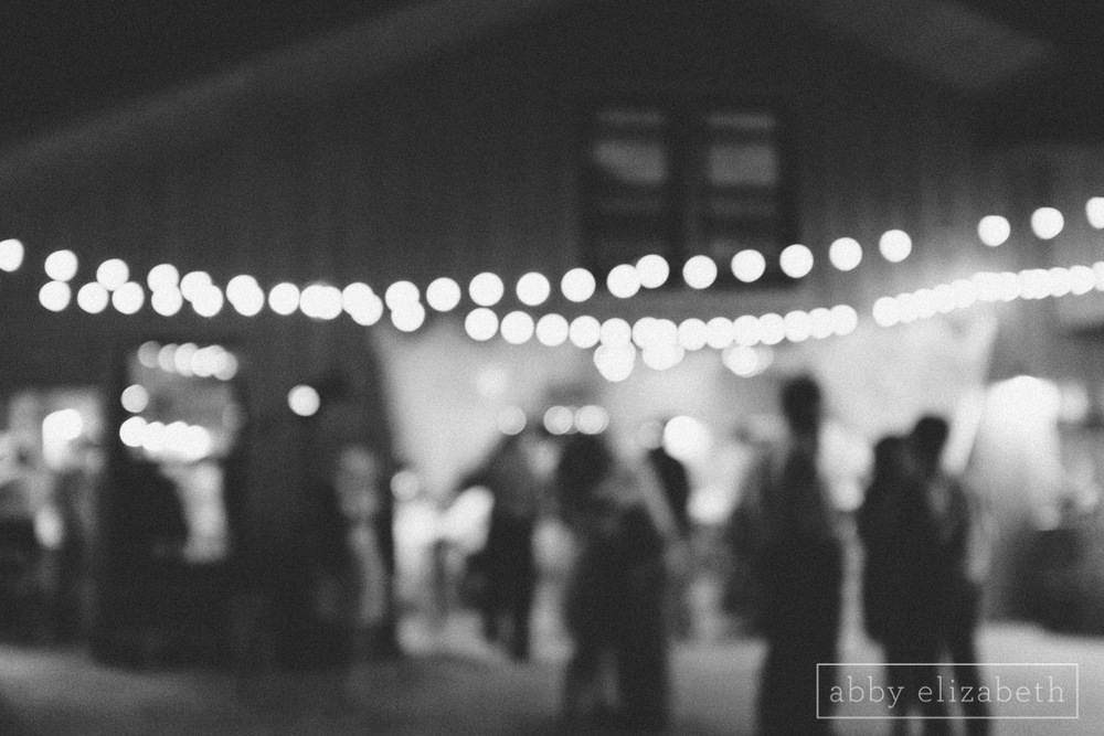 Abby_Elizabeth_Photograhy_Asheville_wedding_claxton_farms260.jpg