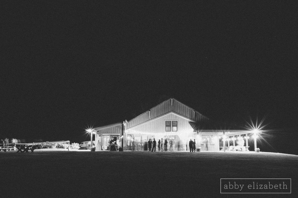 Abby_Elizabeth_Photograhy_Asheville_wedding_claxton_farms261.jpg
