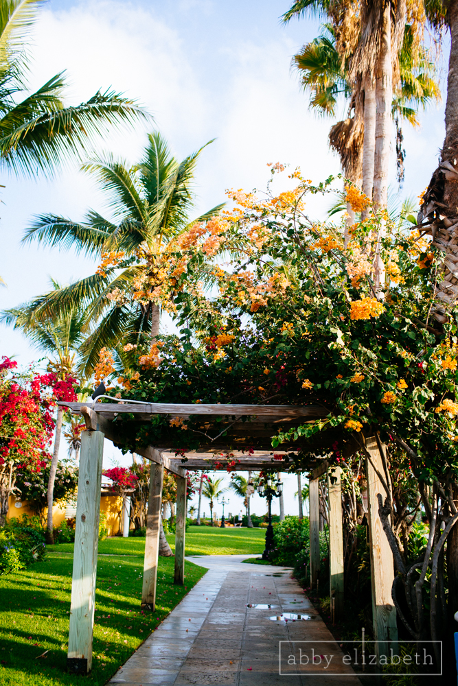 Turks_and_Caicos_Destination_Wedding_Abby_Elizabeth_Photography025.jpg