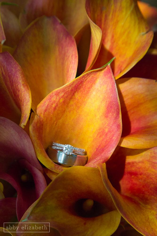 Storybrook_Farm_Wedding_Abby_Elizabeth_Photography013.jpg