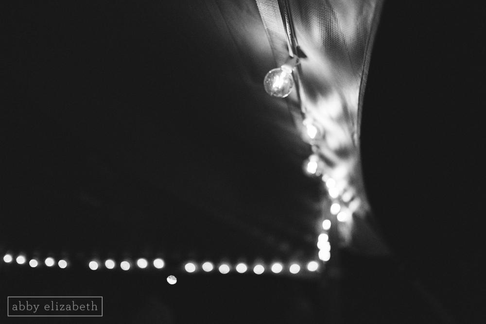 Storybrook_Farm_Wedding_Abby_Elizabeth_Photography160.jpg