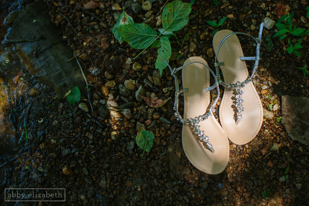 Knoxville_Backyard_Wedding_Abby_Elizabeth_Photography021.jpg