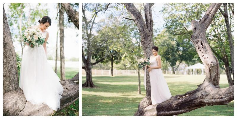 Renee_Dan_Marblegate_Farm_Wedding_Abigail_malone_Photography-266.jpg