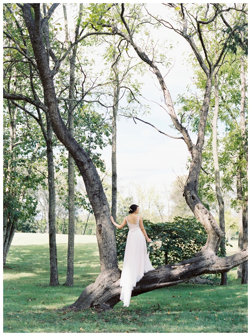 Renee_Dan_Marblegate_Farm_Wedding_Abigail_malone_Photography-251.jpg