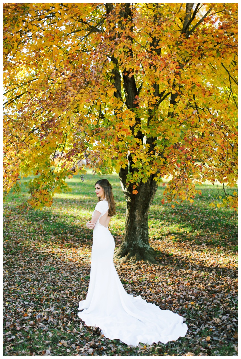Rachel_Fall_Bridal_Abigail_Malone_Photography-158.jpg