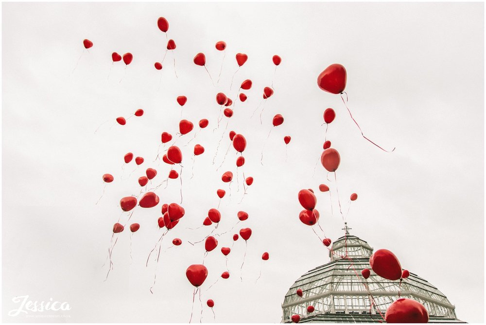 99 red balloons released at sefton palm house in liverpool