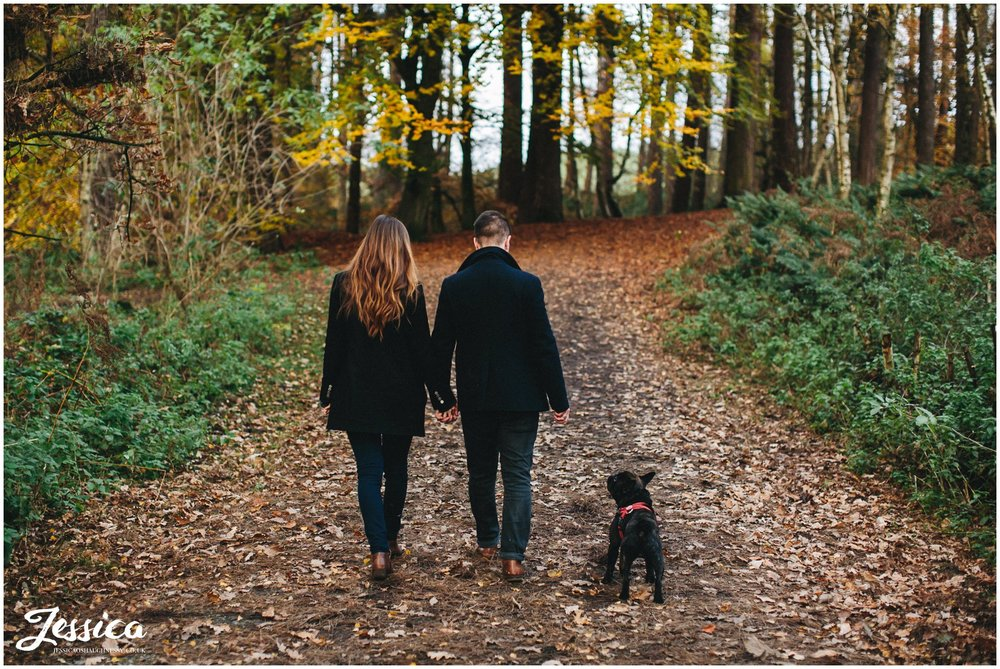 couple walking with french bulldog in delamere forest
