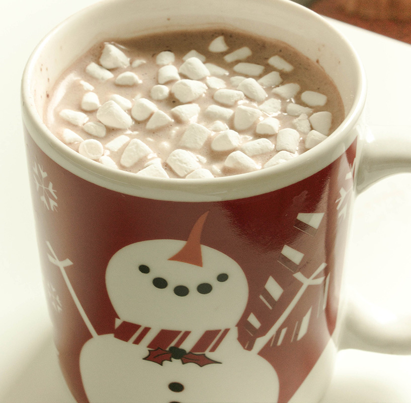 Hot chocolate. Yummy. Even Mr. Snowman is happy to see the marshmallows.