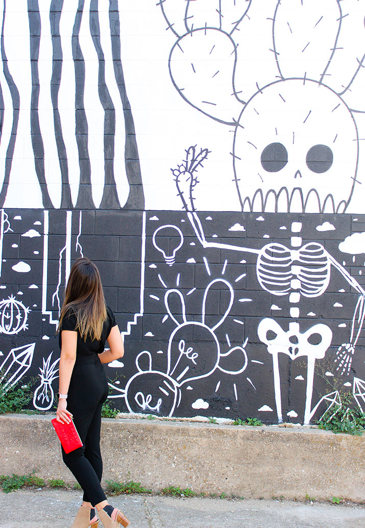 This fun graphic wall is located in Dallas Oak Cliff.