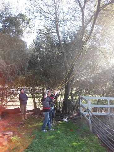 garden 2012 (15).JPG