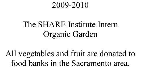 garden 2010 (1).jpg