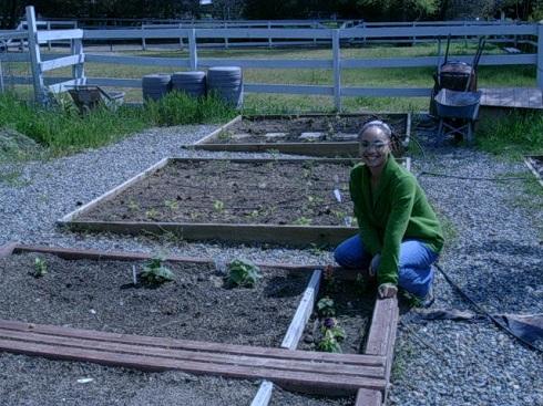 garden 2010 (21).JPG