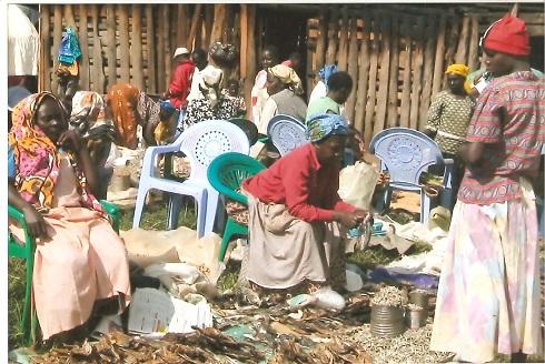 Kenya Lesles 2012 (1) [MAIN].jpg