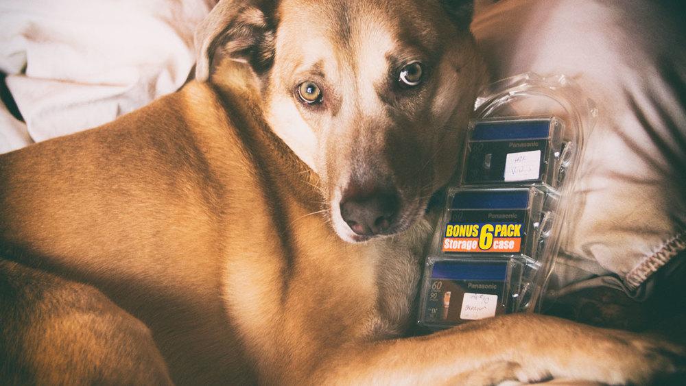 Sawyer and a sweet mini-dv 6-pack.