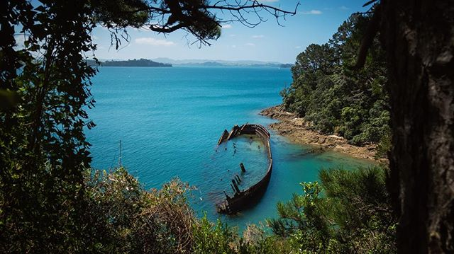 Today was super fun, headed over to Moturekareka Island and checked out the Rewa Wreck! . . . . . #summer #ocean #shipwreck #nz #sonyrx100v #sonyrxmoments #paradise #adventure #haurakigulf #auckland #nz #newzealand #travel