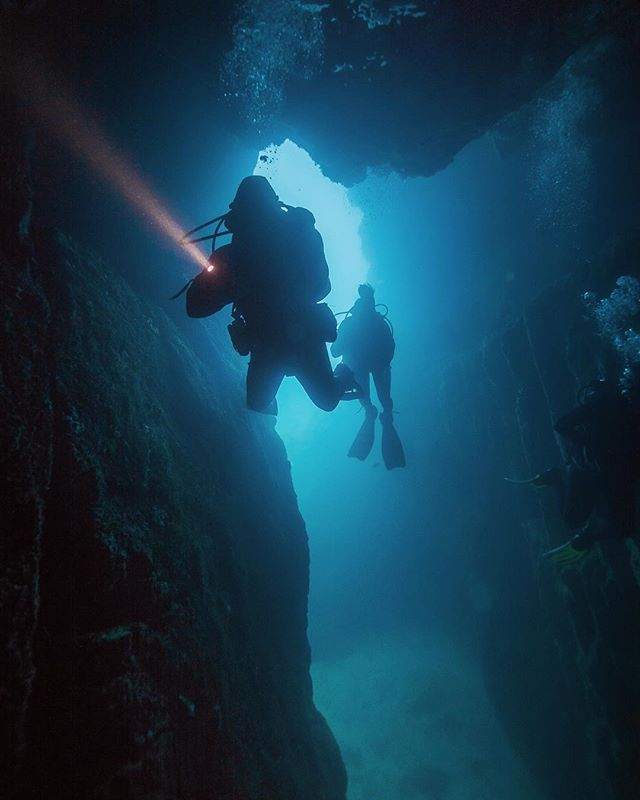 Spent the day with Darth Vader today diving at Deep Water Cove @paihia.dive 👌🏼👌🏼 . . . . . #uw #uwphotography #underwaterphotography #cavediving #darthvader #lightsaber #ocean #diving #scuba #dive #sony #sonynz #padi #underwater #newzealand #bayofislands