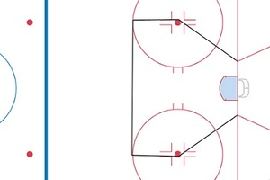 "via fearthefin.com, almost 80% of NHL goals are scored from the ""homeplate"". That means the vast majority of games are won or lost in this area of the ice."