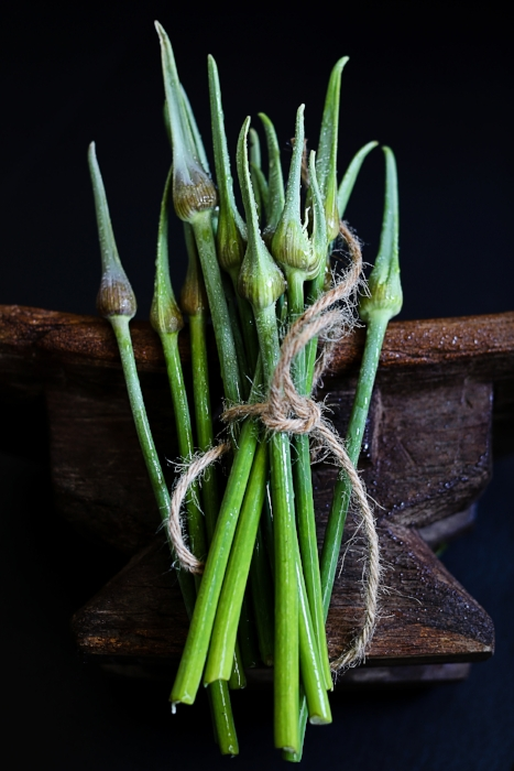 Garlic Scape © ParithaWannawanit