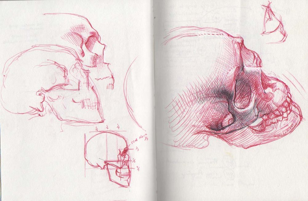 skull red.jpg
