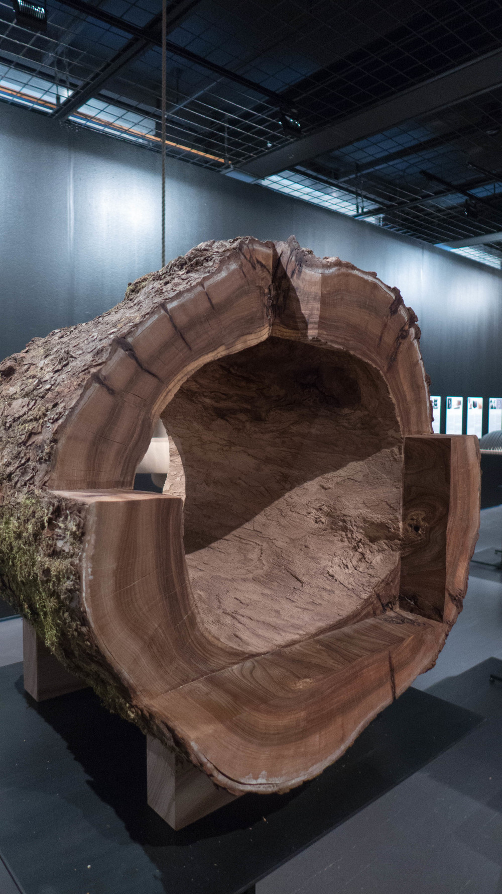 A hollowed out log - the exhibition piece from JKMM Architects