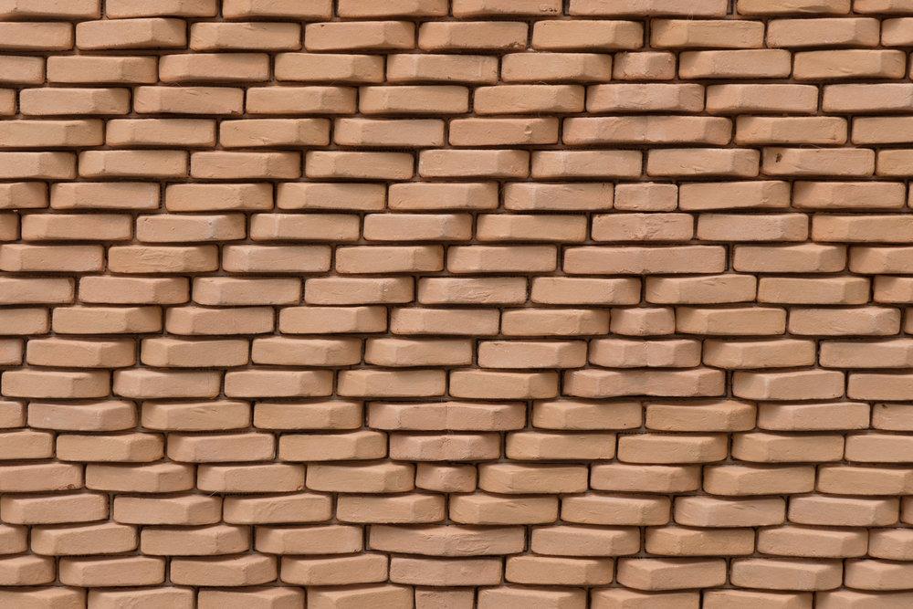 Levende murværk / Living Brickwork