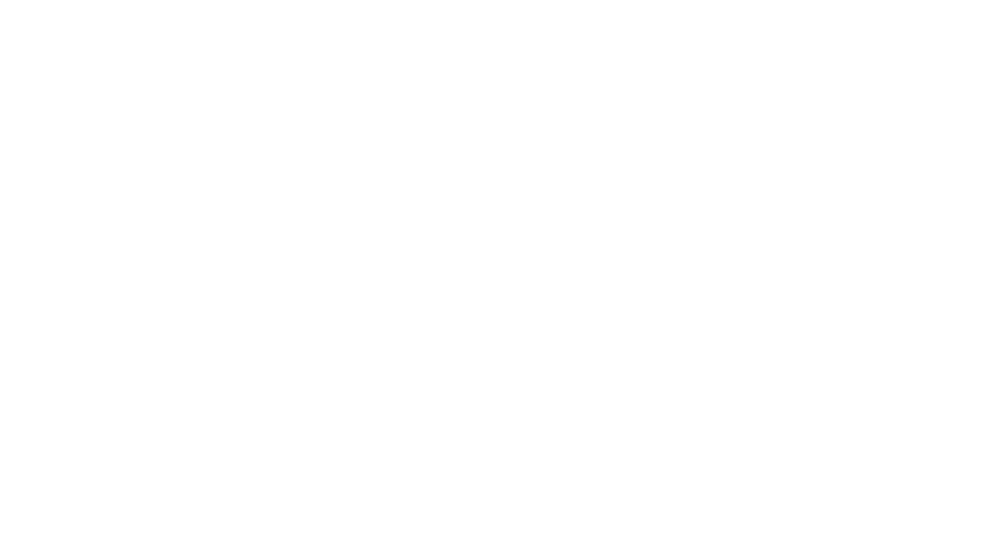 the_bead_initiative_logo_official_partner_rev.png