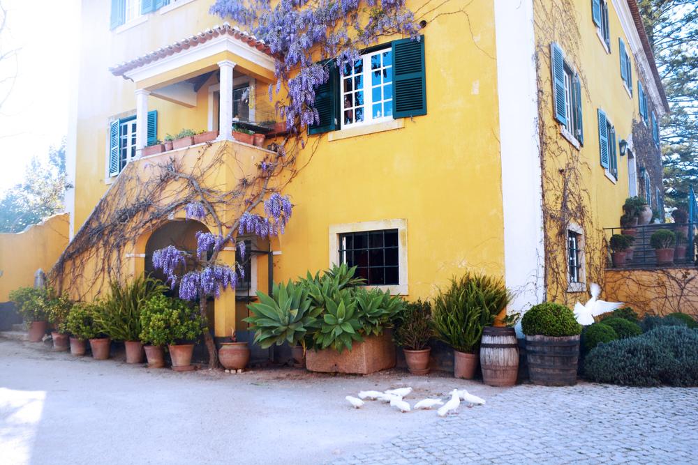 Quinta De Sant'Ana Wine Tasting La Point