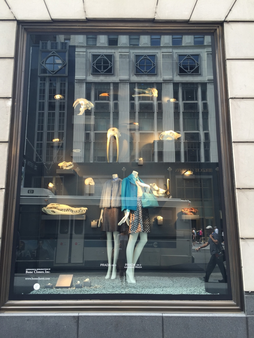 bergdorf's visual merchandising