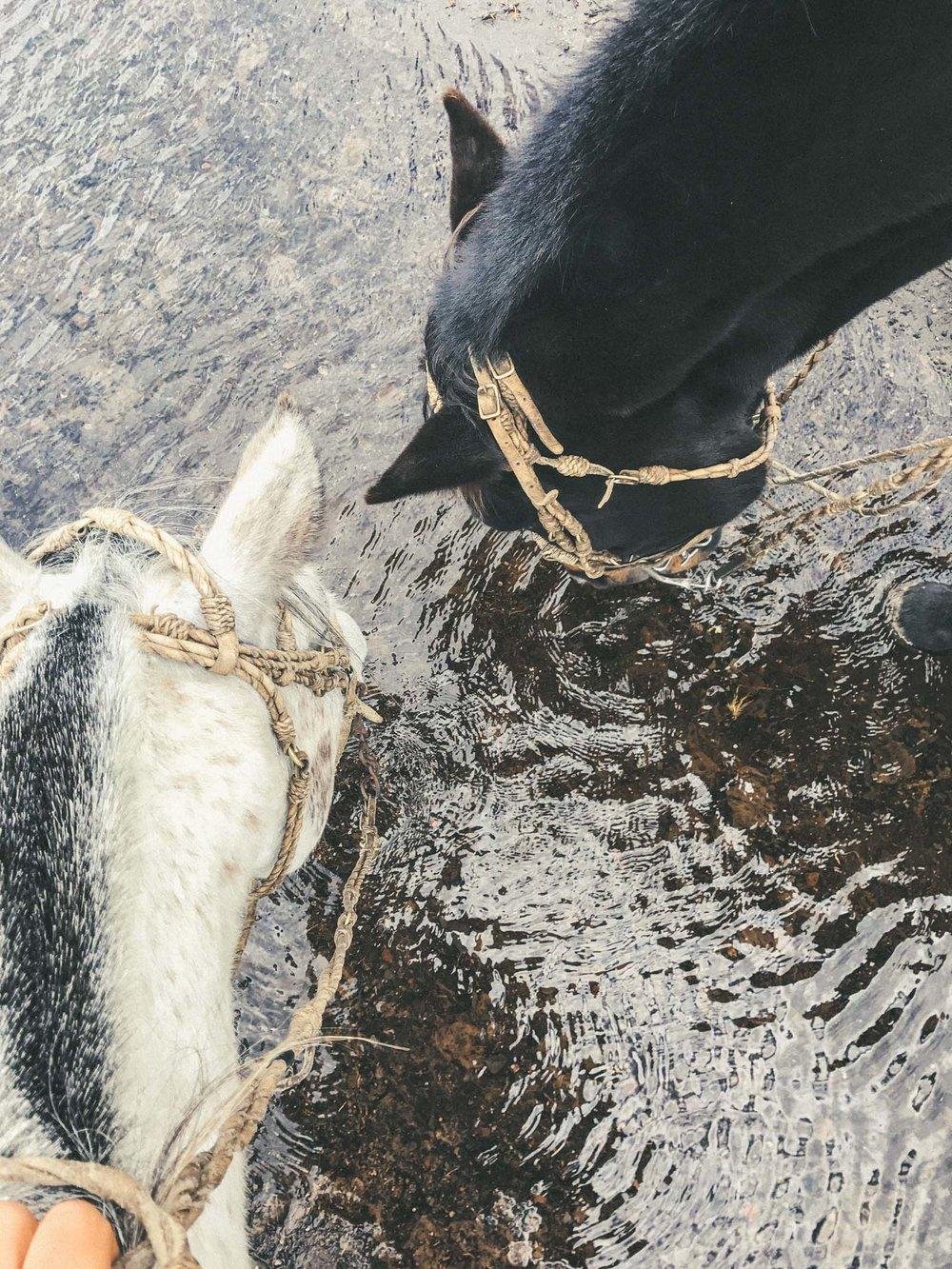 Ecuador_Horseriding-9393.jpg