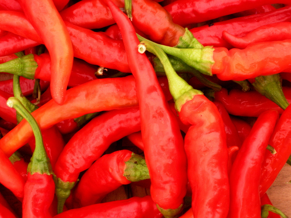 Add some heat and a kick to your leftovers with  fresh hot peppers, including cayenne. (November 2013, A.Gross)