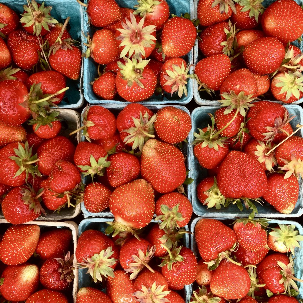 Strawberries in pints, June 2017 (A.Gross)