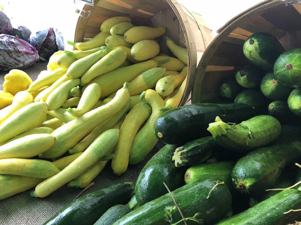 Summer squash & zucchini! (A. Gross, July 2018)
