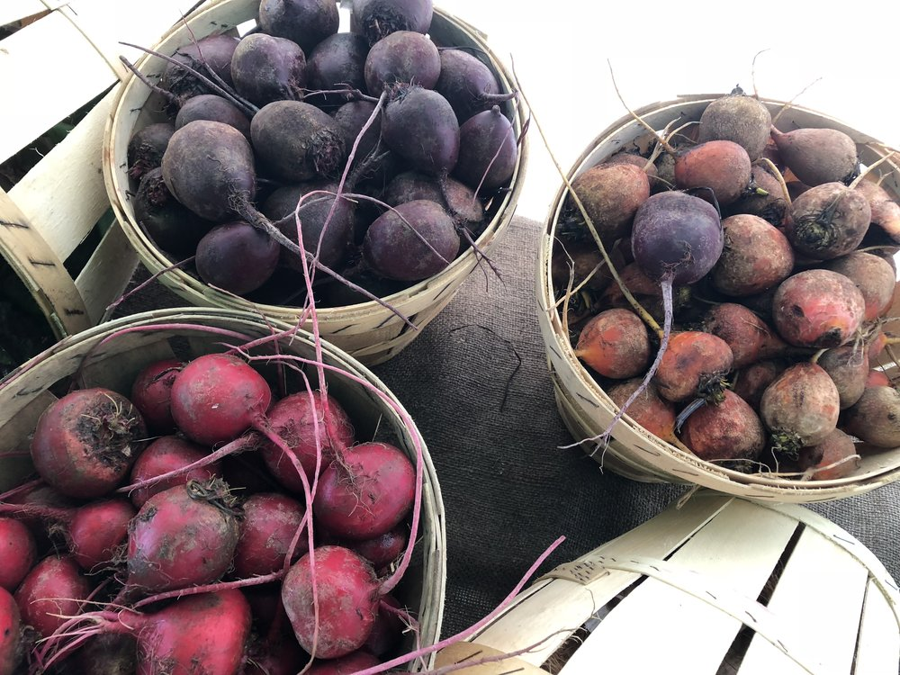 Beets, beets, beets! (A. Gross, August 2018)